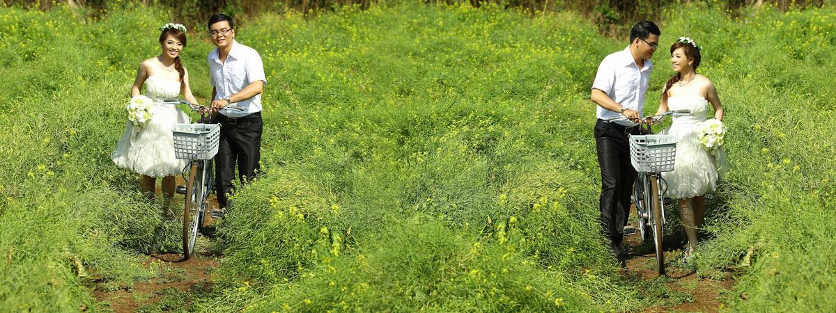 Lãng mạn ảnh cưới mùa hoa cải