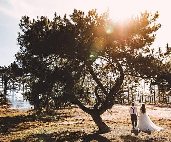 Dịch vụ quay phim, chụp ảnh cưới bằng Flycam