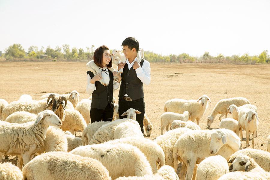 Album cưới Hồ Cốc