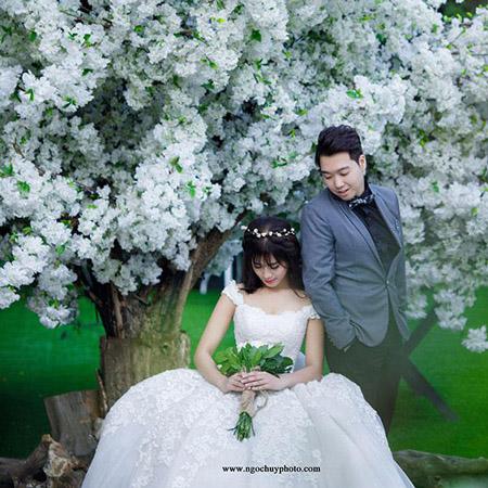 Ý tưởng chụp hình cưới với những màu hoa trong album Ngọc Huy
