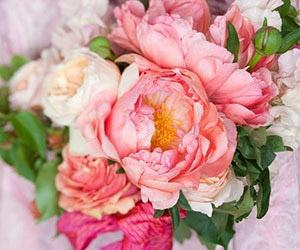 Hoa mẫu đơn - Xu hướng hoa cưới 2014