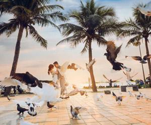 Những loài vật đáng yêu làm album cưới thêm thú vị