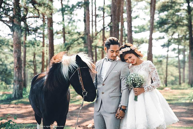 album hình cưới đẹp đà lạt