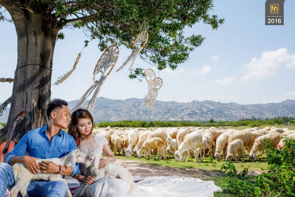 Album cưới Phan Rang